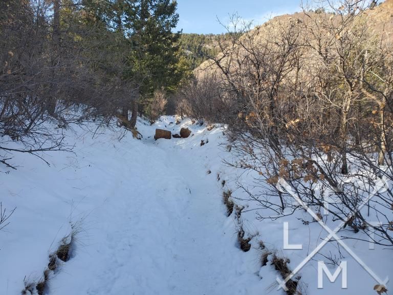 The view of a snow covered hill on the start of the Palmer Loop Trail (Section 16)