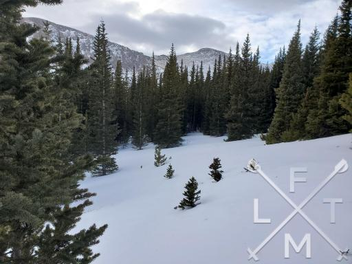 Snowy terrain can lead to some fun times in the winter but it is important to know the basics.  This is a snow covered field with green pine trees in the distance a mountain reaches for the sky