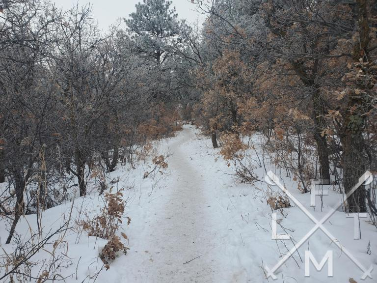 The Oak Shortcut trail as part of the Spruce Mountain Loop.  The trail is covered with snow and surrounded by trees.