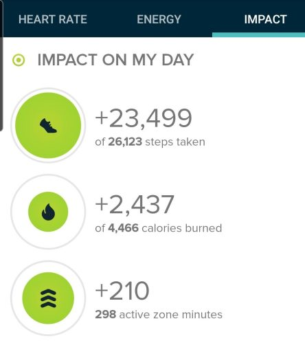 The hike at the Ridgeline Open Space really racked up the steps.  23,499 for the official step count from my Fitbit.