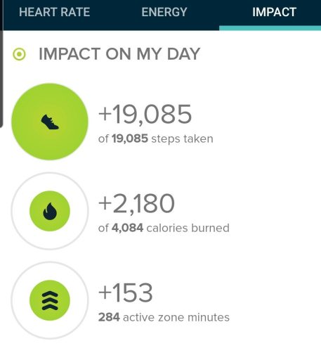 My step count for the Long Lake Winter Loop was 19,085 steps.