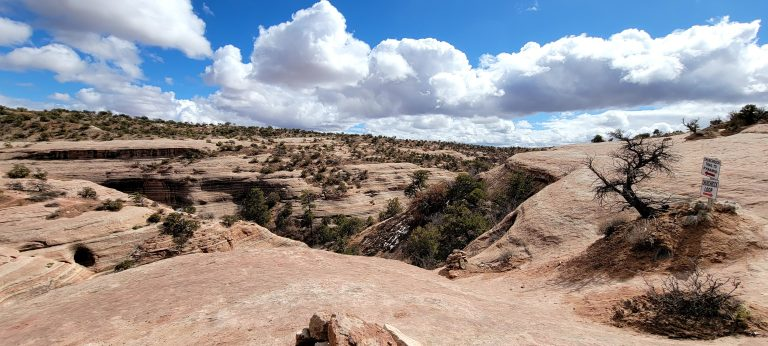 The upper portion of the loop around the Church Rock trail.  You are above the canyon walking on flat rock tops following cairns.
