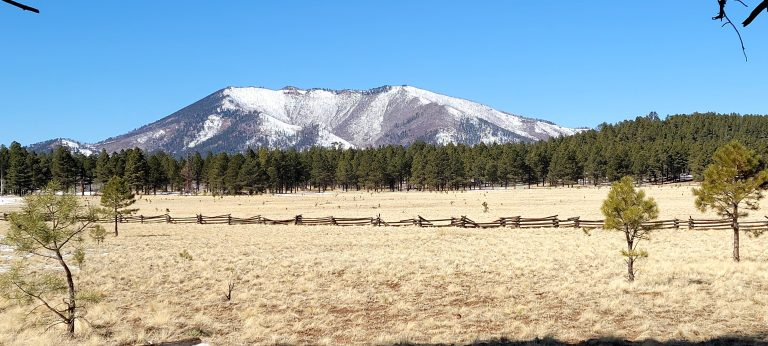 The start of the Kendrick Park hike has a large open meadow with trees in the mid ground and a partially snow covered mountain in the distance.