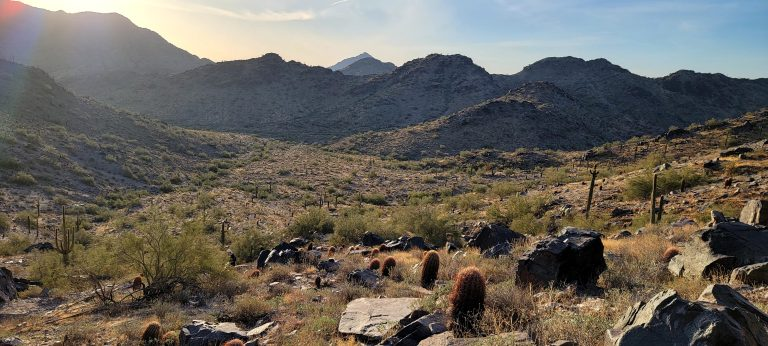 Several peaks rising up above the Freedom Trail (#302).  Some cacti dot the landscape between the trail and the peaks.