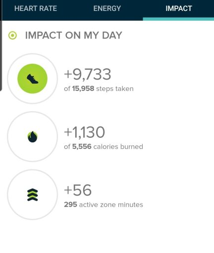 The Step Count for the Challenge Trail at Fishers Peak State park was 9,733 steps according to my fitbit.