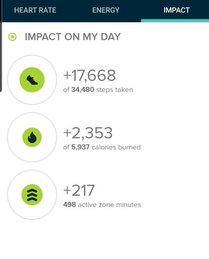 This one was a nice little hike and a great workout.  The step count for the Mormon Loop to National Loop was 17,668 steps.