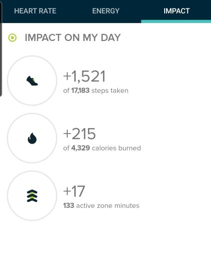 My step count from the Yavapai Vista Trail was 1,521 steps.