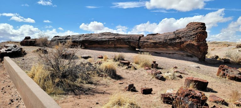 A long a sturdy looking fossil laying on its side on the Giant Logs path at the Petrified Forest National Park