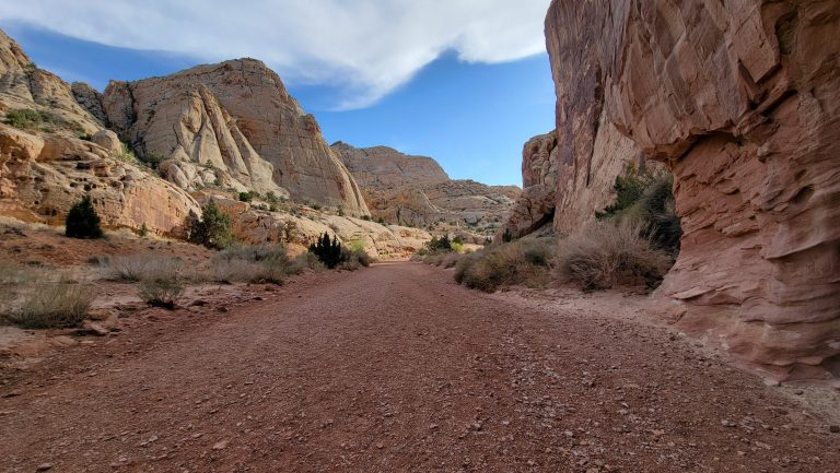 A picture of the flat section at the beginning of the Grand Wash Hike.  The trail is like a rocky road with large canyon walls on either side.