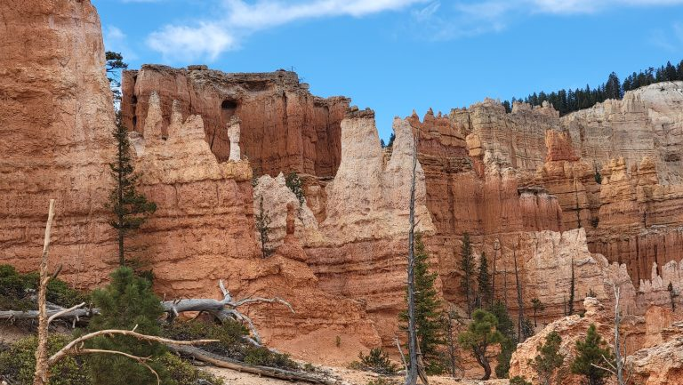 A wall of spires from the Peek-a-Boo loop trail.  The center spires are white in color while the surrounding rocks are a darker red.