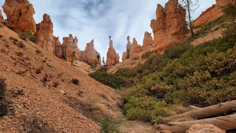 From the bottom of the canyon there are green bushes on the right side of the slope.  In the background tall hoodoo's reach for the sky on the Peek-a-Boo loop in Bryce Canyon.