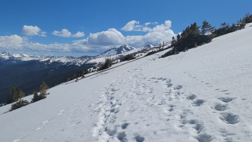 The hike to mount flora had plenty of slipping down into the snow.