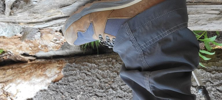 My Kodiak Skogan Hiking boots from Kodiak Boots stepping on a log that has fallen on the trail.