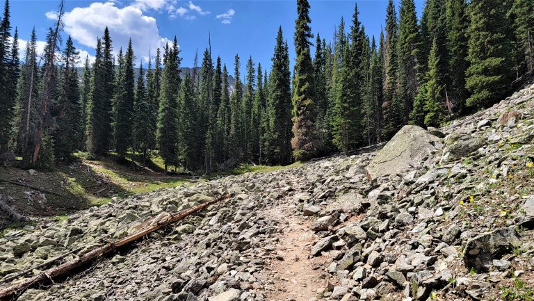 The second rockslide area is much shorter and surrounded by pine trees on the Ptarmigan Lake Trail.  These are rather common to Colorado Hiking.