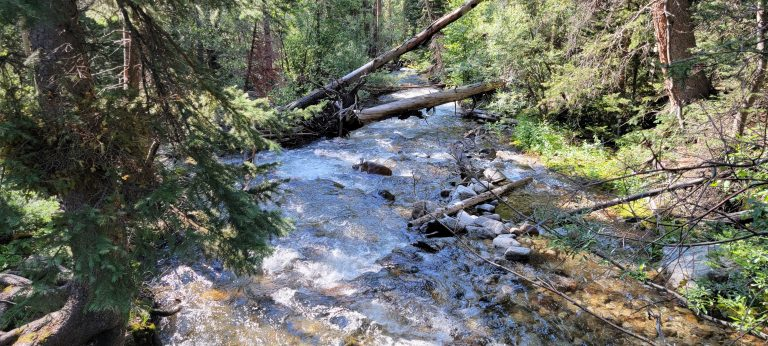 The North Cottonwood creek that runs right next to you for about a half mile on the way to Kroenke Lake.