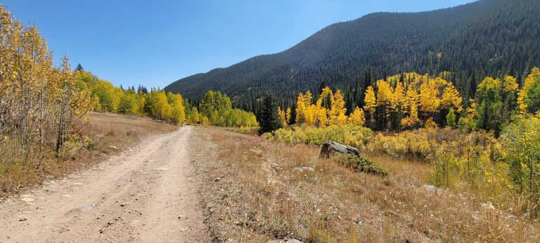 Yellow, gold and green trees in the distance on a display of fall in Colorado on the trail to Gibson Lake.