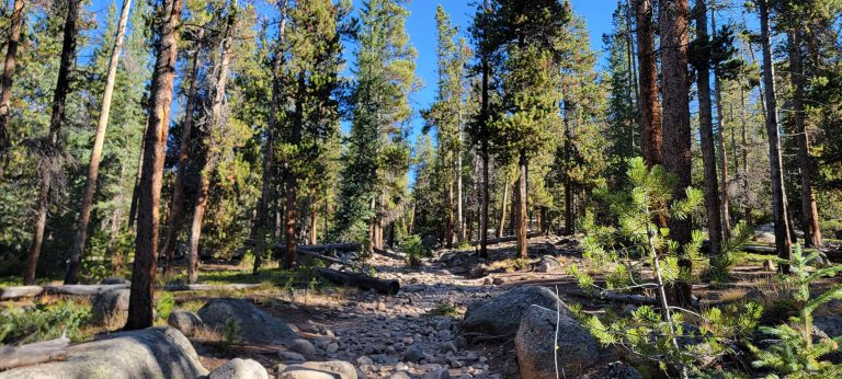 Green Pines surround the rocky trail on an early section of the Abyss Trail to Helms Lake on a nice Colorado Fall Hike