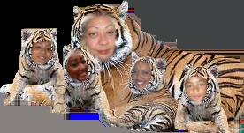tigerfamilj