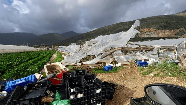 Latina, agricoltura in ginocchio a causa dei forti venti