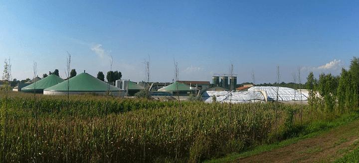 Esco Lazio, biogas l'energia pulita che aiuta la natura