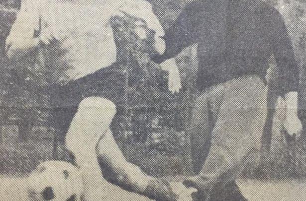 Mario Cancellieri, il terzino che marcò Omar Sivori