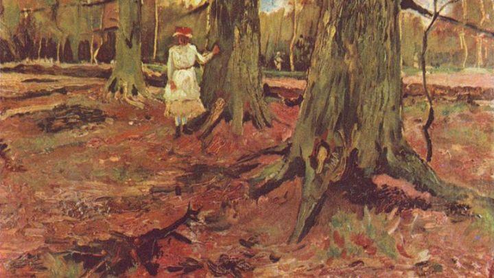 La ragazza nel bosco