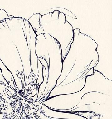 Blue ink sketch of flower