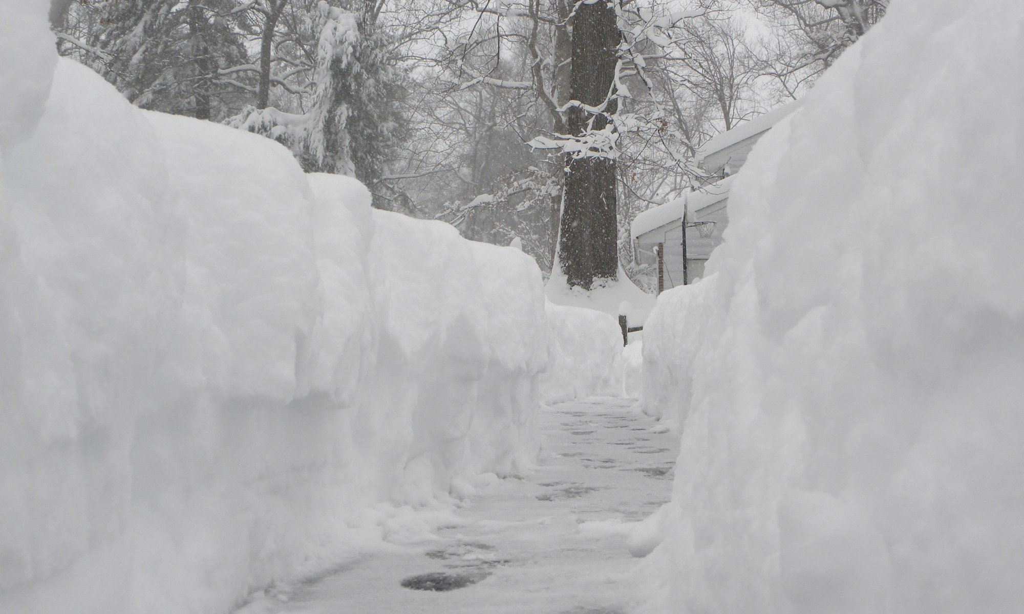 Deep snow shoveled path with footprints