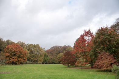 Couleur d'automne à Meise 070-10