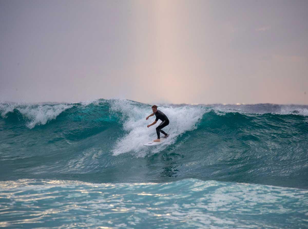 bronte beach sydney sunrise surfing