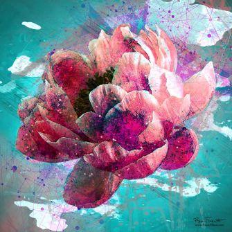 Flower Splash 2 | Original Digital Artwork