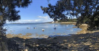 Paysage presqu'île Michel Legay
