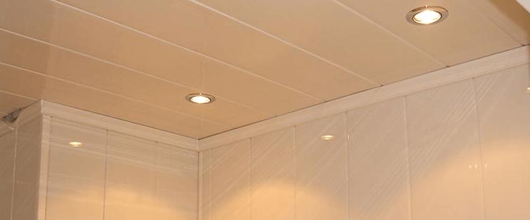 Faux Plafond En Pvc Ce Qu Il Faut Savoir Faux Plafond Net