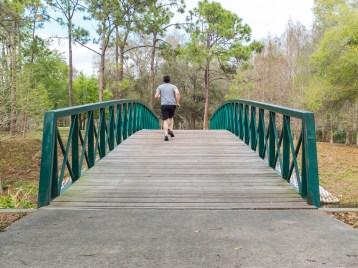 Bridge - Post