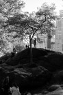 """""""King of the Hill"""". Leica M-P, Summilux 50mm"""