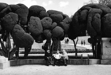 """""""Buen Retiro"""" park, Madrid"""