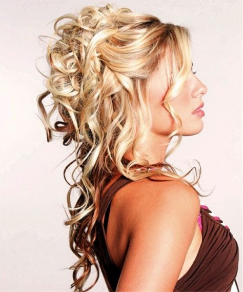 half up half down curly hairstyles with braids