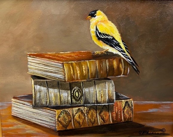 Visitor-Goldfinch by Judy Phearson