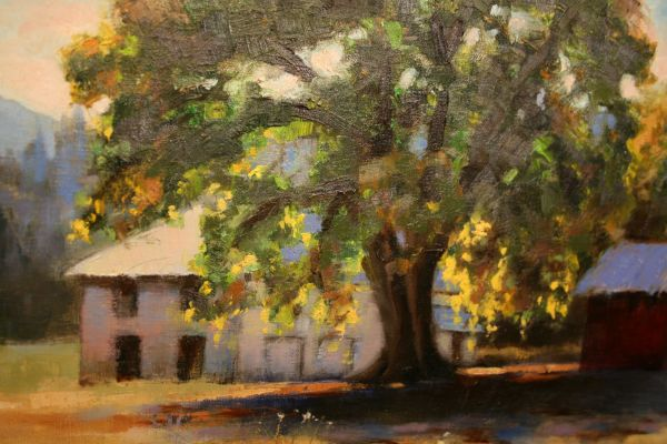 (Close-up) Applegate Valley Shadows by Charity Hubbard