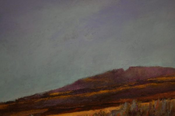 (Close-up) Oregon Outback by Steve Bennett