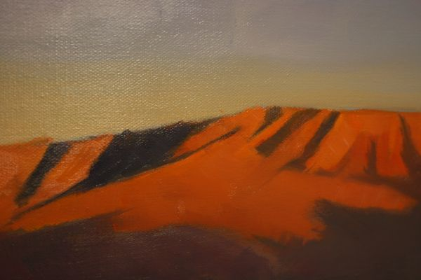 (Close-up) Steens View by Janice Druian