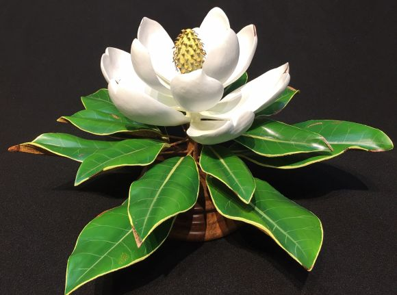 Sweet Magnolia by Mark Holland and Cindy Lewis