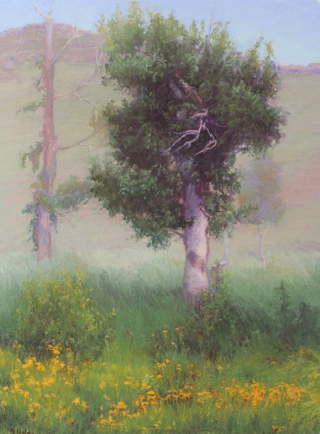 Summertime, Steens Mountain by Norma Holmes