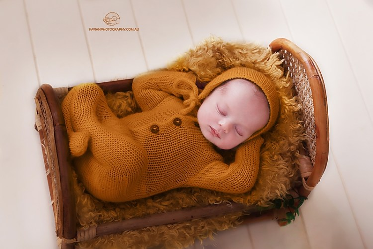 newborn bed photo shoot Brisbane