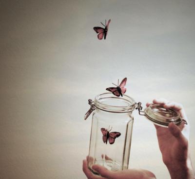 https://i2.wp.com/favim.com/orig/201108/12/butterflies-butterfly-flying-free-freedom-Favim.com-121832.jpg