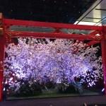 羽田空港国際線ターミナルをぶら歩き。のれんが連なる江戸小路とクール・ジャパンに日本人もびっくり!世界の星空を楽しめるプラネタリウムカフェも。