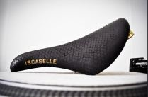 iscaselle