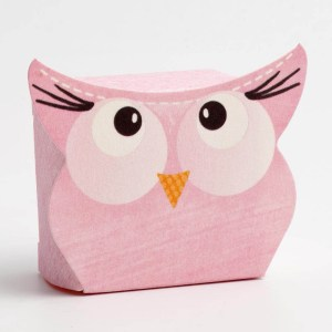 Pink Owl Favour Box - Small