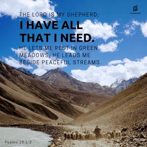 Who is YOUR shepherd?