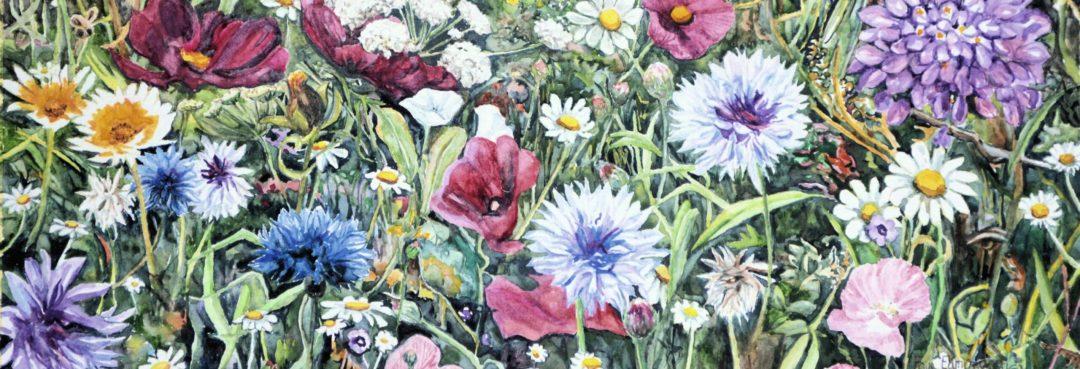 flowers in watercolour painted by Somerset artist, Faye Edmondson
